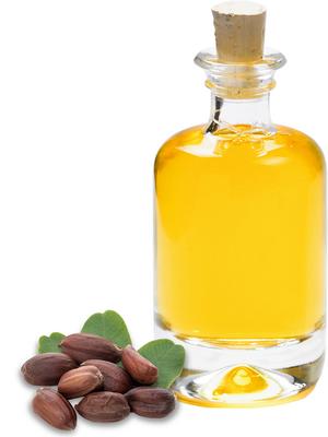 Organic jojoba oil virgin purchasing: Manufacturer & Supplier B2B | Gustav  Heess